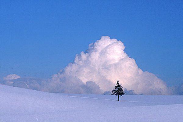冬到来サムネイル