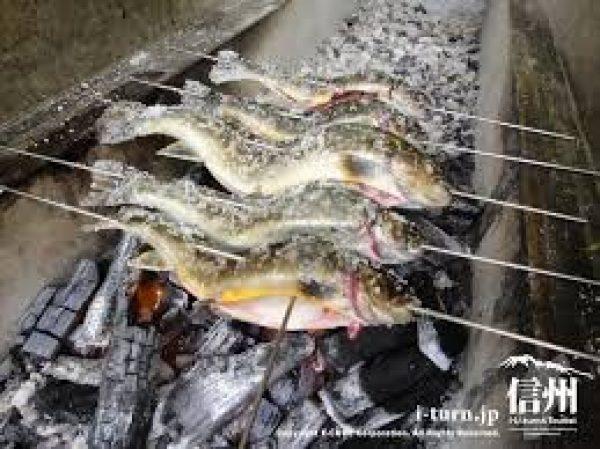 ニジマス釣りサムネイル