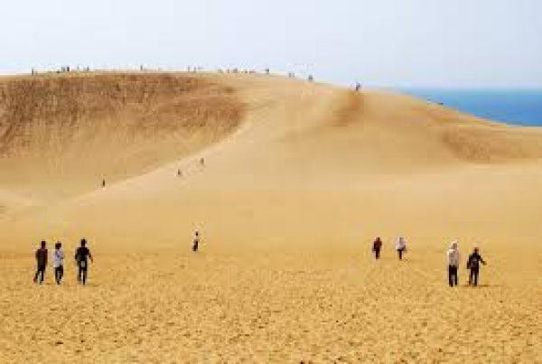 鳥取砂丘サムネイル