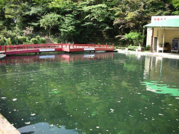 有馬温泉と釣り堀サムネイル